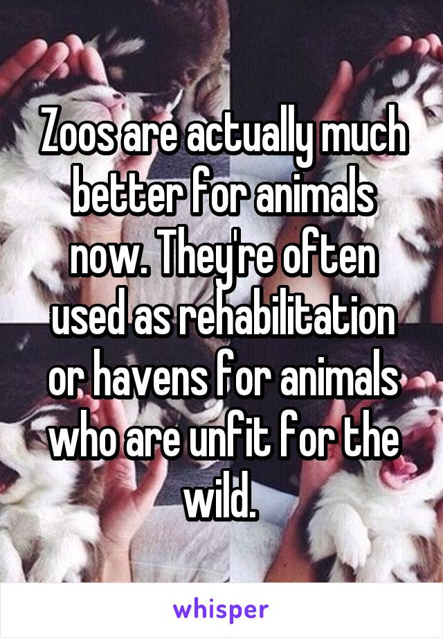 Zoos are actually much better for animals now. They're often used as rehabilitation or havens for animals who are unfit for the wild.