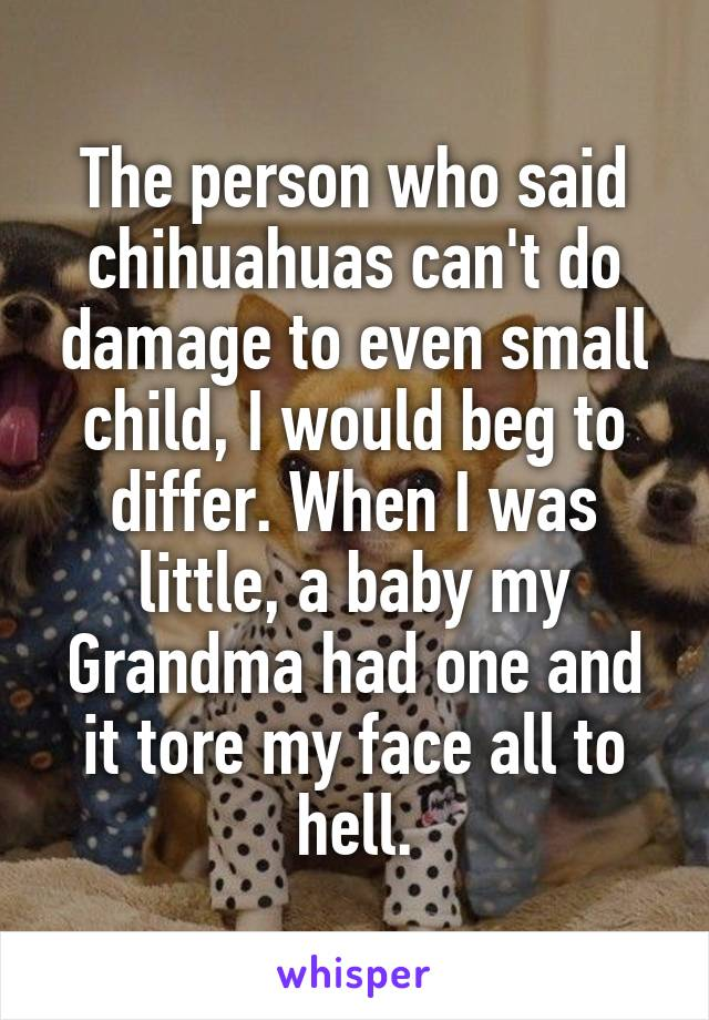 The person who said chihuahuas can't do damage to even small child, I would beg to differ. When I was little, a baby my Grandma had one and it tore my face all to hell.