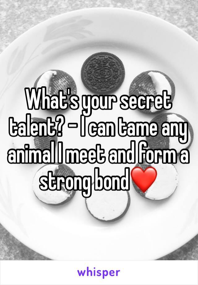 What's your secret talent? - I can tame any animal I meet and form a strong bond❤️