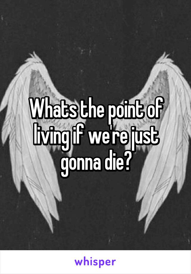Whats the point of living if we're just gonna die?