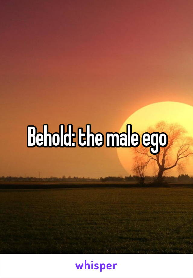 Behold: the male ego