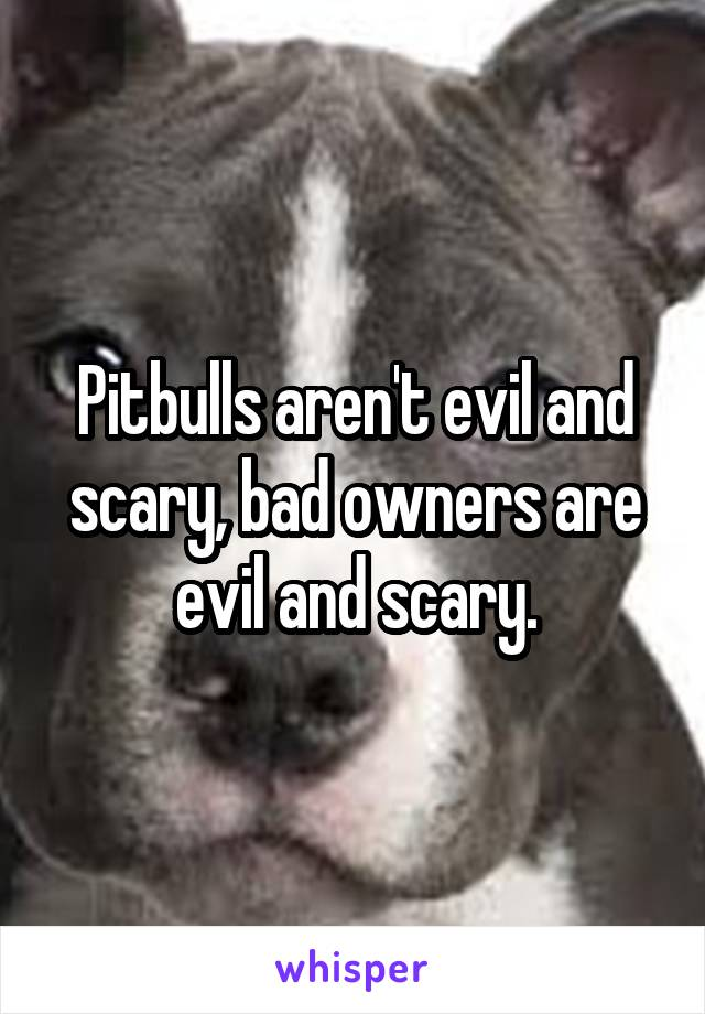 Pitbulls aren't evil and scary, bad owners are evil and scary.