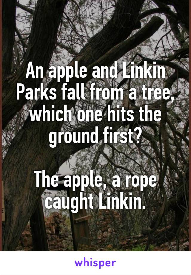 An apple and Linkin Parks fall from a tree, which one hits the ground first?  The apple, a rope caught Linkin.