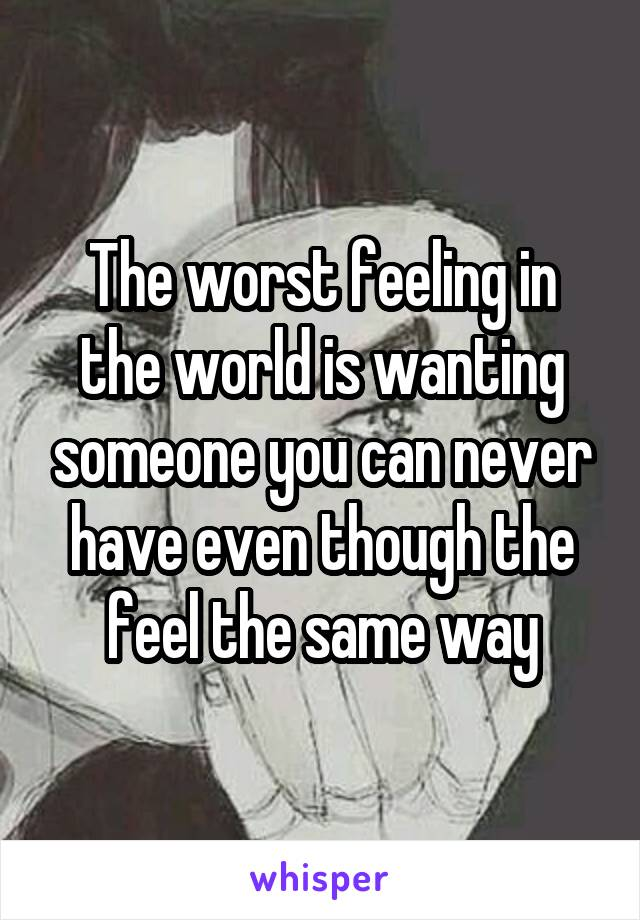 The worst feeling in the world is wanting someone you can never have even though the feel the same way
