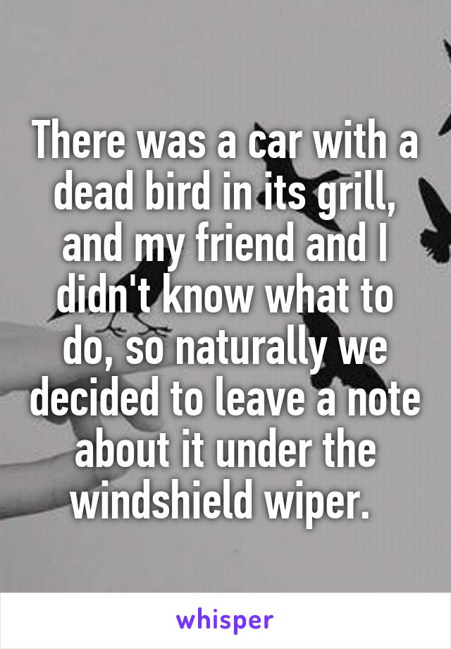 There was a car with a dead bird in its grill, and my friend and I didn't know what to do, so naturally we decided to leave a note about it under the windshield wiper.