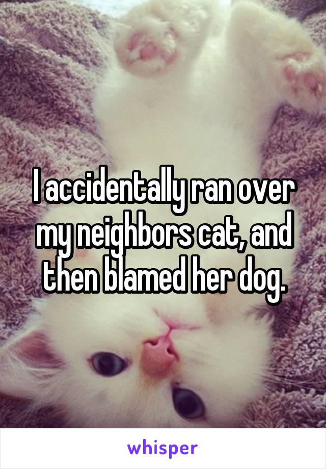 I accidentally ran over my neighbors cat, and then blamed her dog.