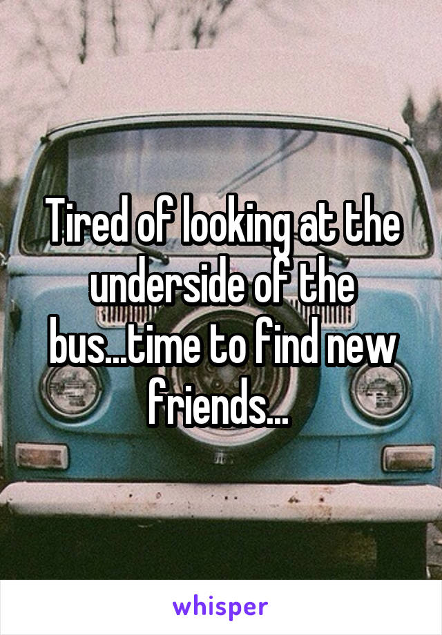 Tired of looking at the underside of the bus...time to find new friends...