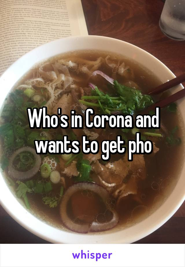 Who's in Corona and wants to get pho