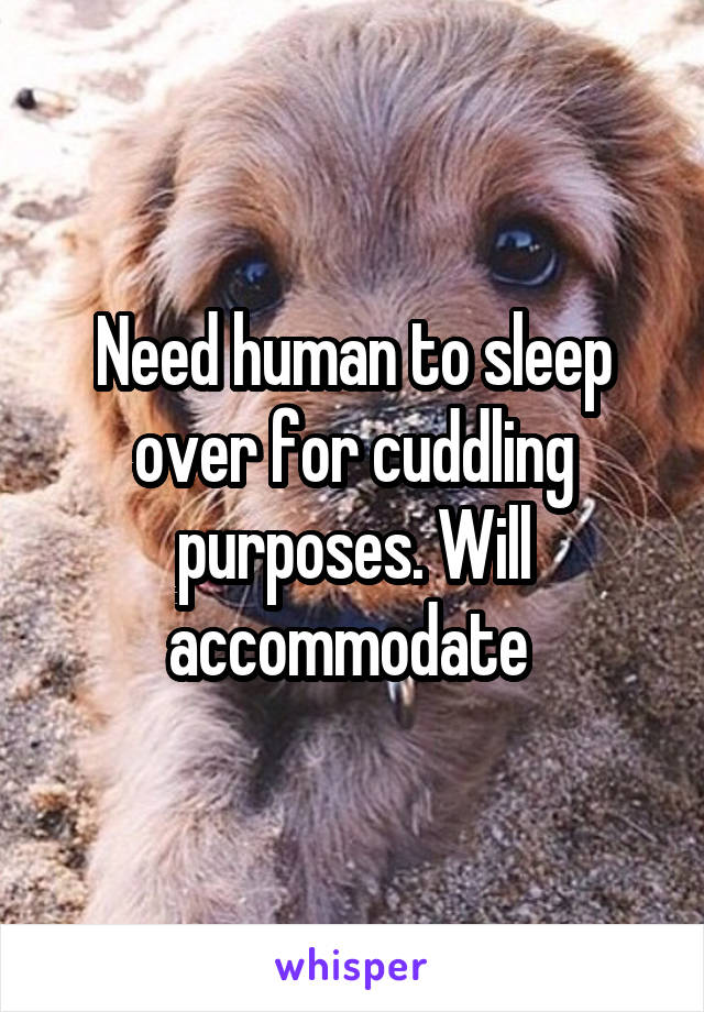 Need human to sleep over for cuddling purposes. Will accommodate