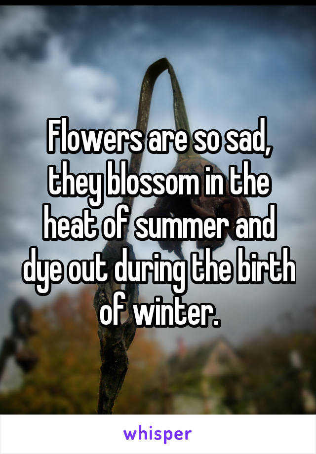 Flowers are so sad, they blossom in the heat of summer and dye out during the birth of winter.