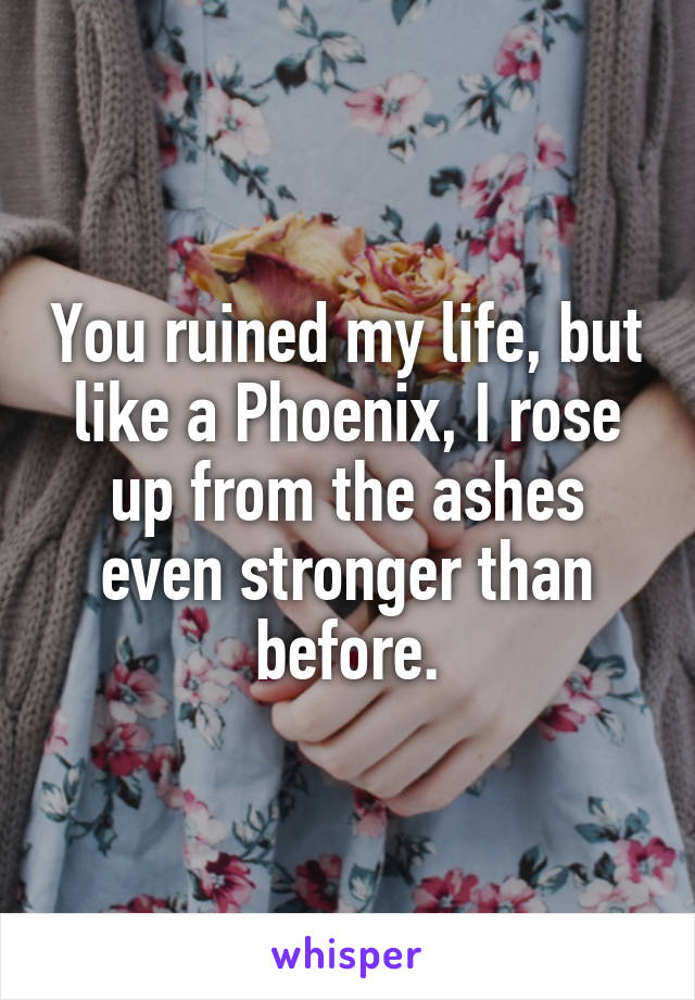 You ruined my life, but like a Phoenix, I rose up from the ashes even stronger than before.