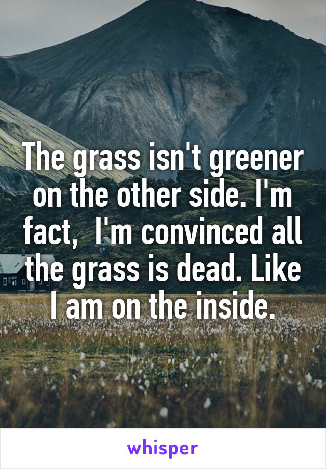 The grass isn't greener on the other side. I'm fact,  I'm convinced all the grass is dead. Like I am on the inside.