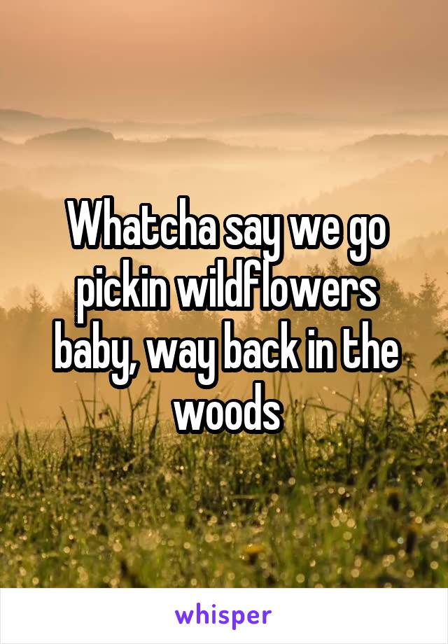 Whatcha say we go pickin wildflowers baby, way back in the woods