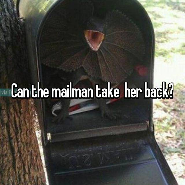 Can the mailman take  her back?