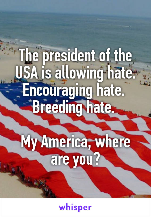 The president of the USA is allowing hate. Encouraging hate.  Breeding hate.   My America, where are you?
