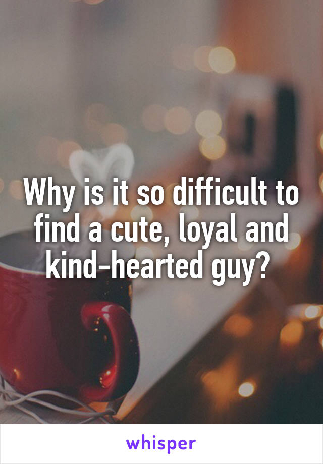 Why is it so difficult to find a cute, loyal and kind-hearted guy?