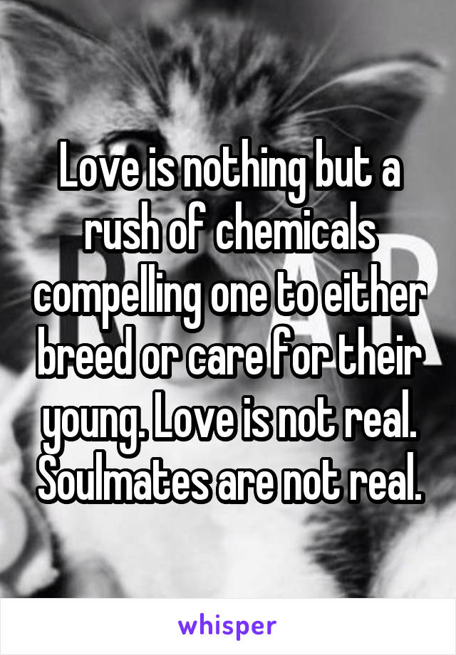 Love is nothing but a rush of chemicals compelling one to either breed or care for their young. Love is not real. Soulmates are not real.