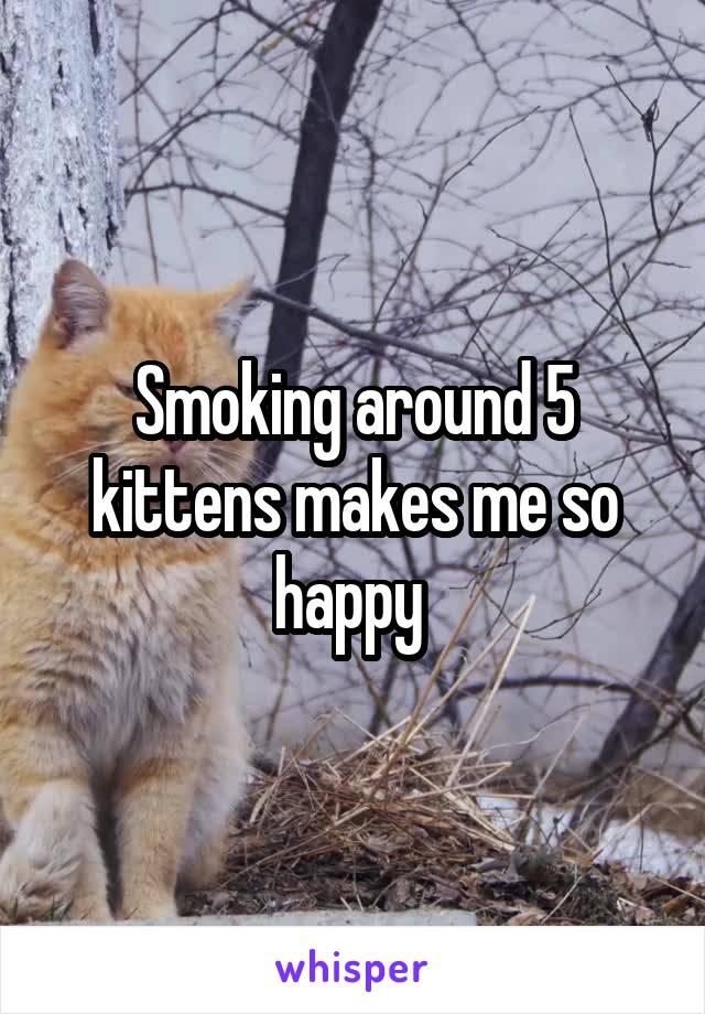 Smoking around 5 kittens makes me so happy