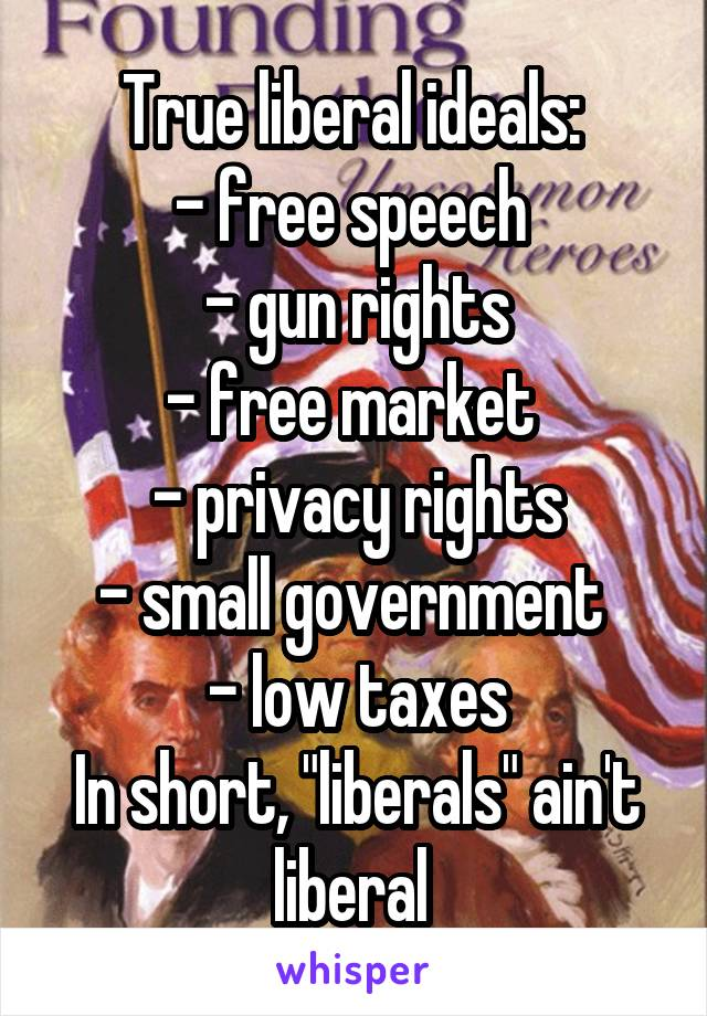 """True liberal ideals:  - free speech  - gun rights - free market  - privacy rights - small government  - low taxes In short, """"liberals"""" ain't liberal"""