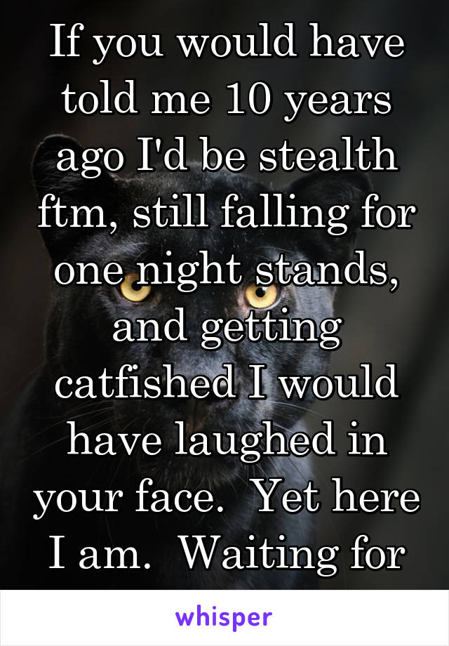 If you would have told me 10 years ago I'd be stealth ftm, still falling for one night stands, and getting catfished I would have laughed in your face.  Yet here I am.  Waiting for the punchline.