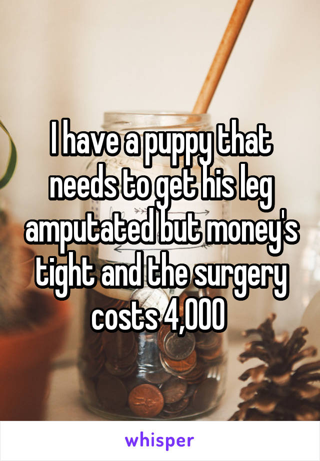 I have a puppy that needs to get his leg amputated but money's tight and the surgery costs 4,000