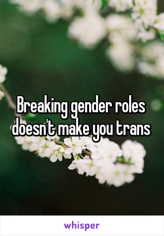 Breaking gender roles  doesn't make you trans