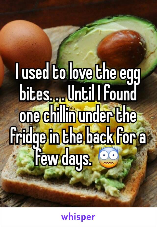 I used to love the egg bites. . . Until I found one chillin under the fridge in the back for a few days. 😨