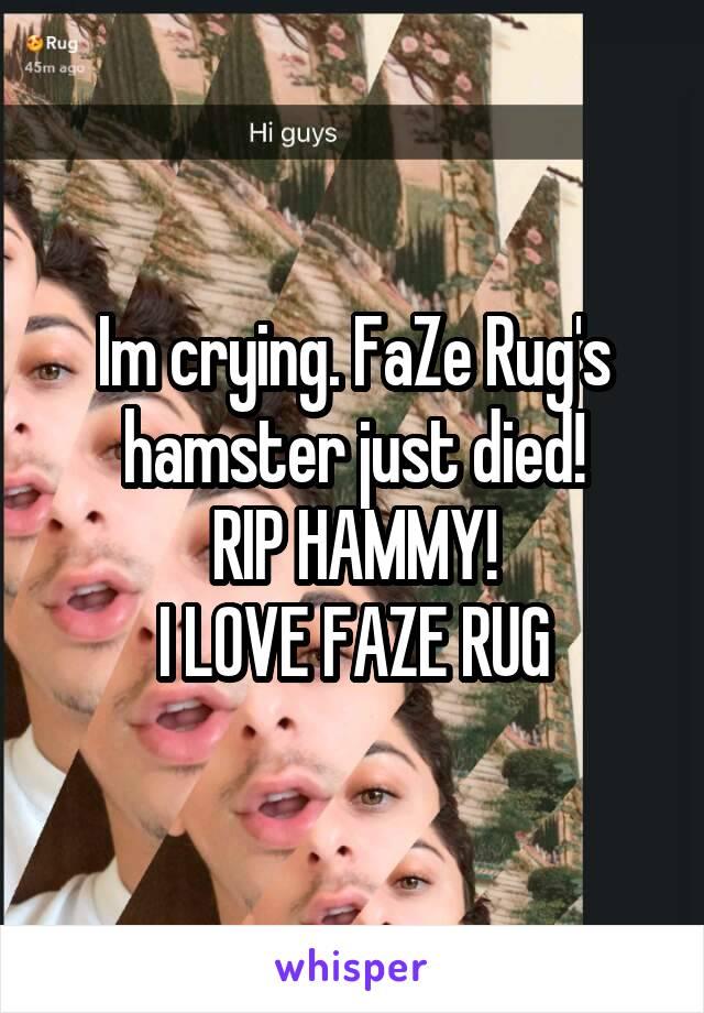 just died! RIP HAMMY! I LOVE FAZE RUG