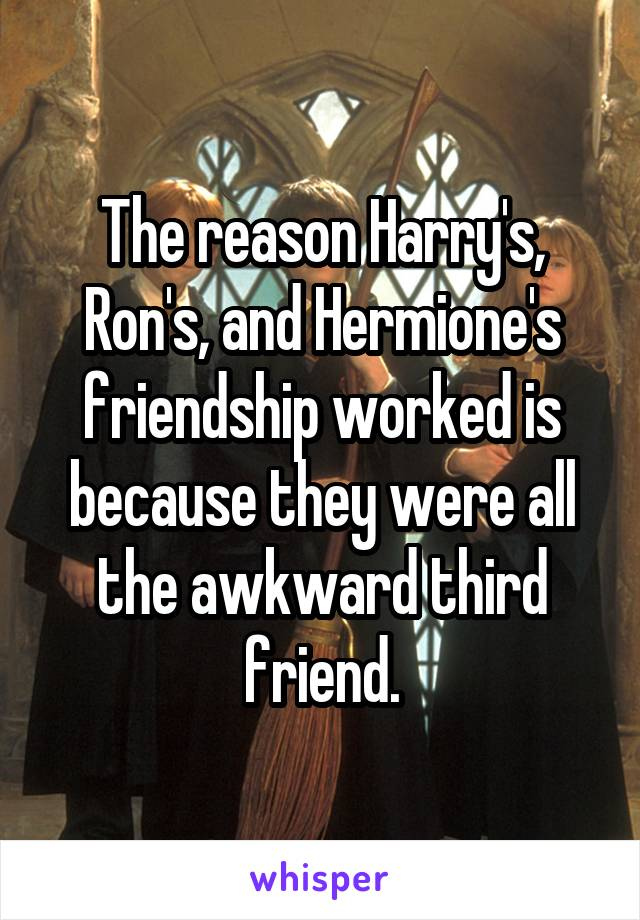 The reason Harry's, Ron's, and Hermione's friendship worked is because they were all the awkward third friend.