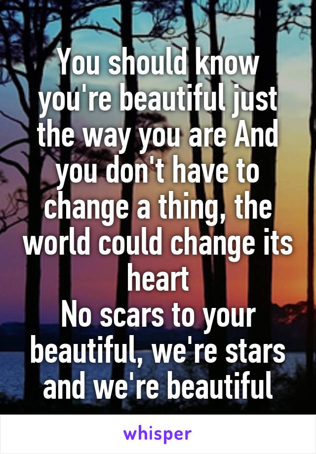 You should know you're beautiful just the way you are And you don't have to change a thing, the world could change its heart No scars to your beautiful, we're stars and we're beautiful
