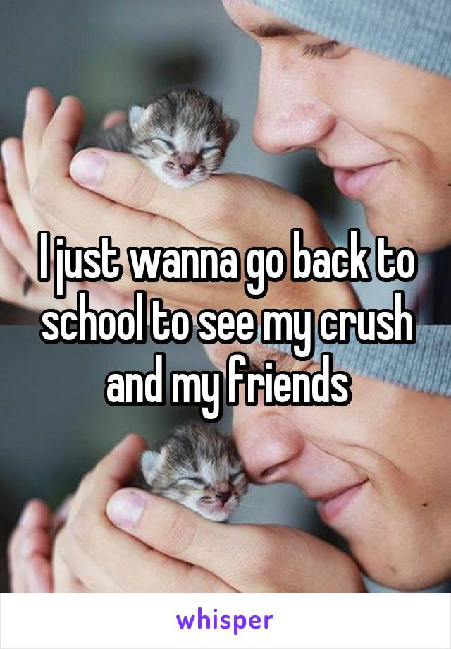 I just wanna go back to school to see my crush and my friends