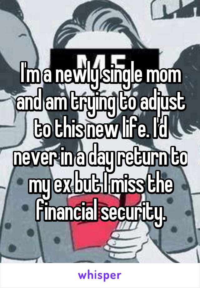 I'm a newly single mom and am trying to adjust to this new life. I'd never in a day return to my ex but I miss the financial security.