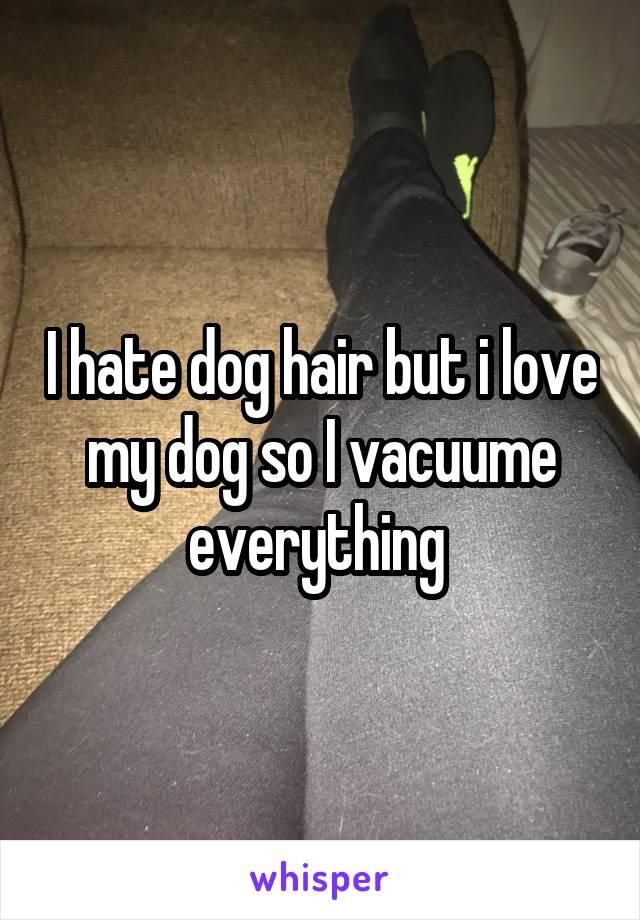 I hate dog hair but i love my dog so I vacuume everything