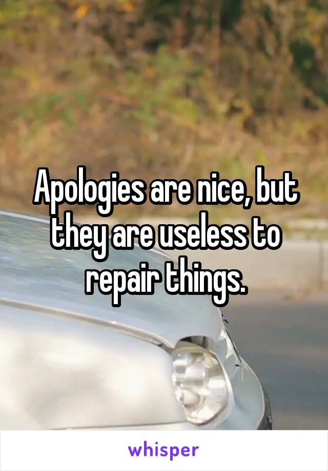 Apologies are nice, but they are useless to repair things.