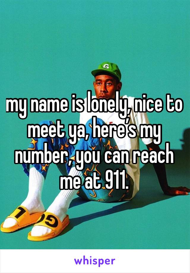 my name is lonely, nice to meet ya, here's my number, you can reach me at 911.