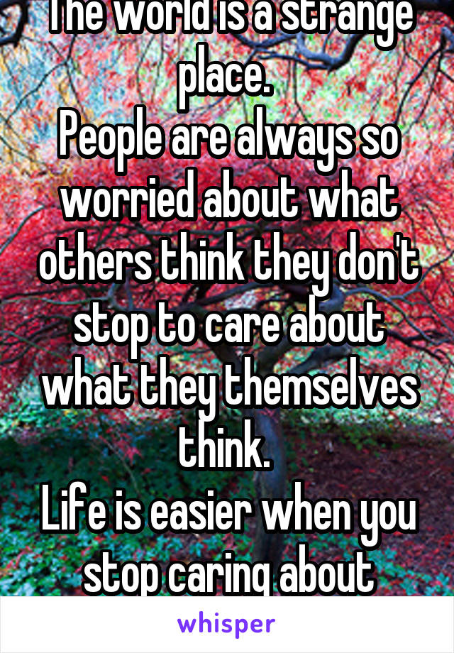 The world is a strange place.  People are always so worried about what others think they don't stop to care about what they themselves think.  Life is easier when you stop caring about opinions.