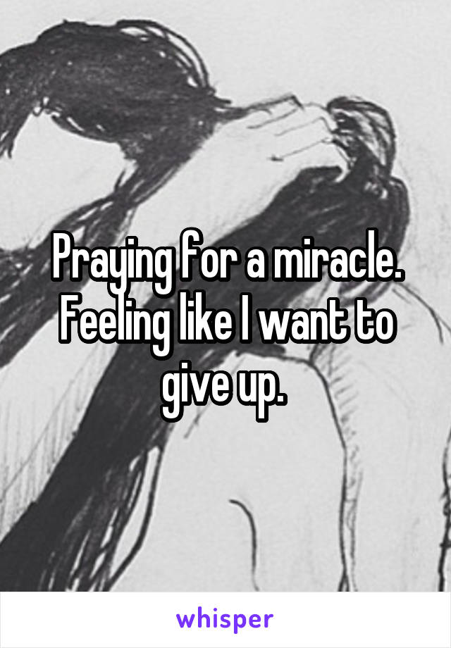 Praying for a miracle. Feeling like I want to give up.