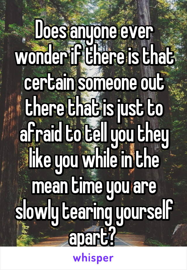 Does anyone ever wonder if there is that certain someone out there that is just to afraid to tell you they like you while in the mean time you are slowly tearing yourself apart?