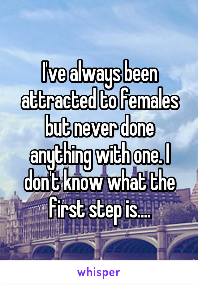 I've always been attracted to females but never done anything with one. I don't know what the first step is....