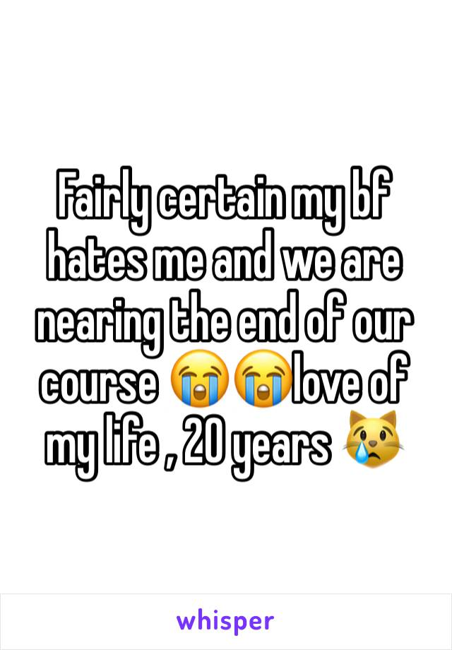 Fairly certain my bf hates me and we are nearing the end of our course 😭😭love of my life , 20 years 😿