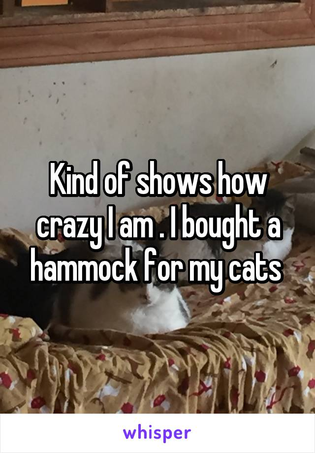 Kind of shows how crazy I am . I bought a hammock for my cats