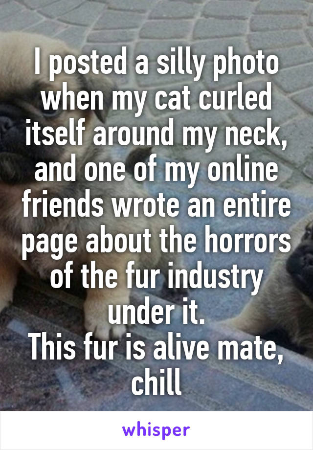 I posted a silly photo when my cat curled itself around my neck, and one of my online friends wrote an entire page about the horrors of the fur industry under it. This fur is alive mate, chill