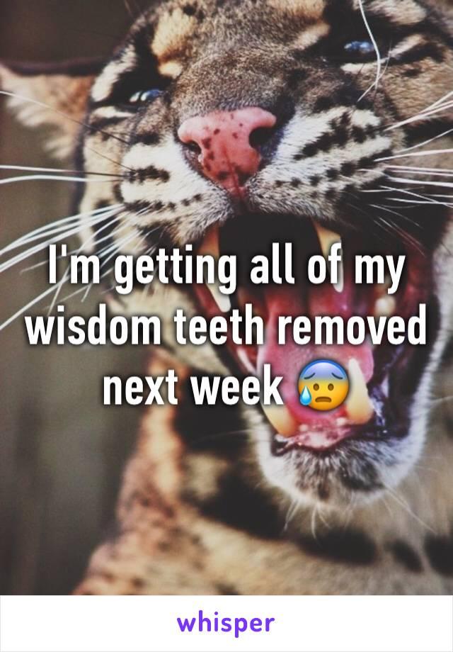 I'm getting all of my wisdom teeth removed next week 😰
