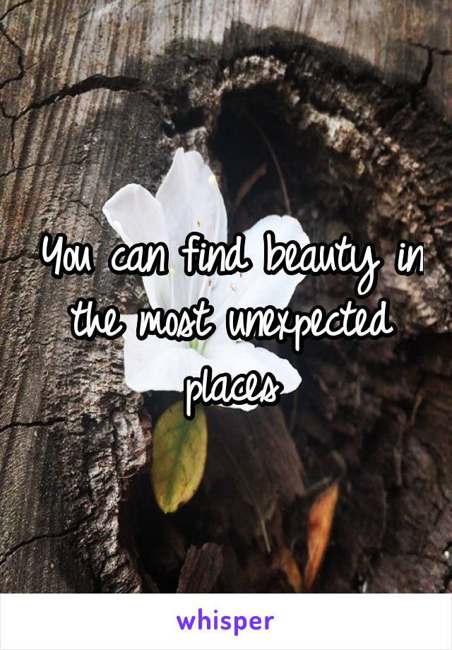 You can find beauty in the most unexpected places