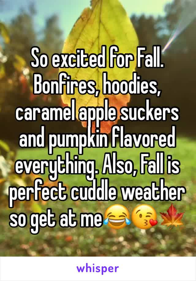 So excited for Fall. Bonfires, hoodies, caramel apple suckers and pumpkin flavored everything. Also, Fall is perfect cuddle weather so get at me😂😘🍁