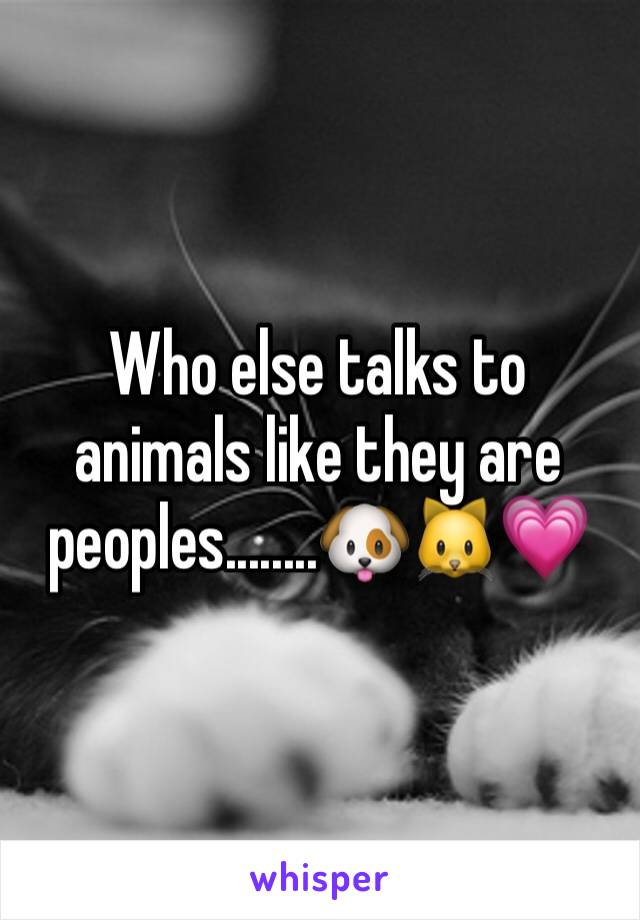 Who else talks to animals like they are peoples........🐶🐱💗
