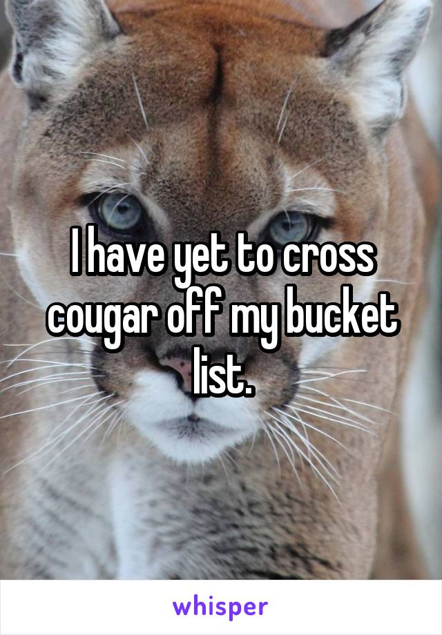 I have yet to cross cougar off my bucket list.