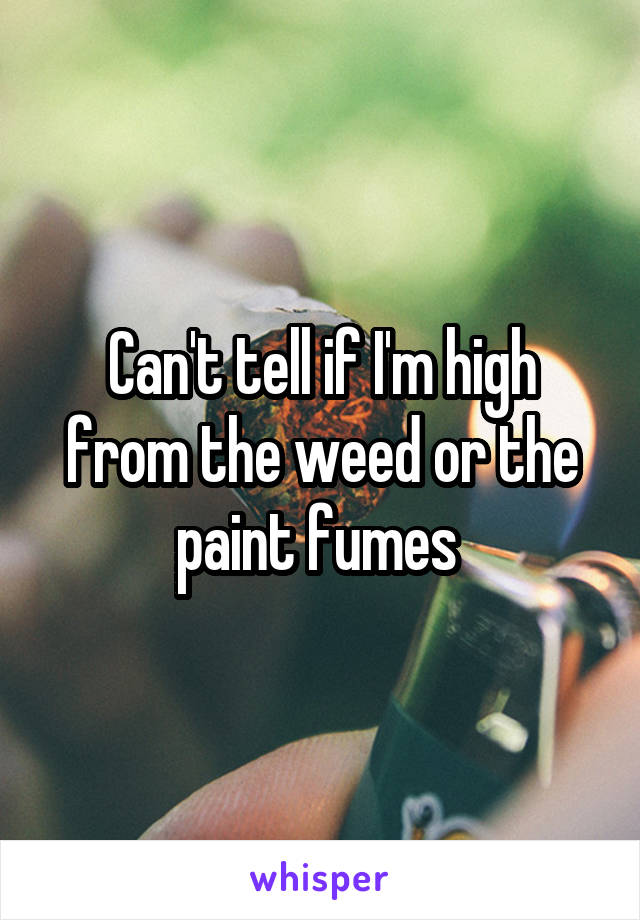 Can't tell if I'm high from the weed or the paint fumes