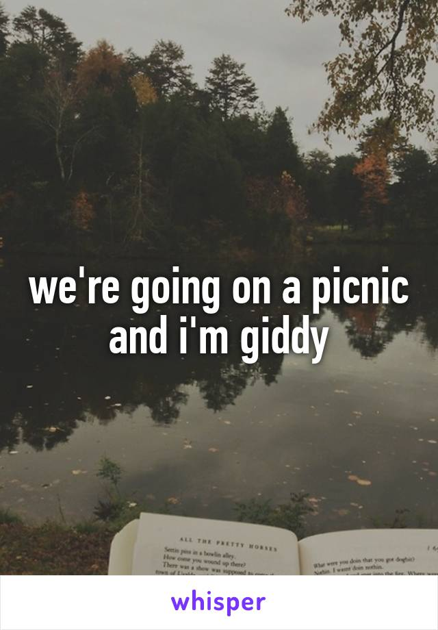 we're going on a picnic and i'm giddy