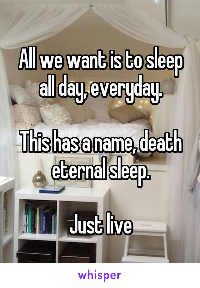 All we want is to sleep all day, everyday.  This has a name, death eternal sleep.  Just live